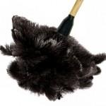 метёлка для пыли