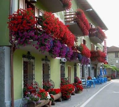 украшение балкона цветами